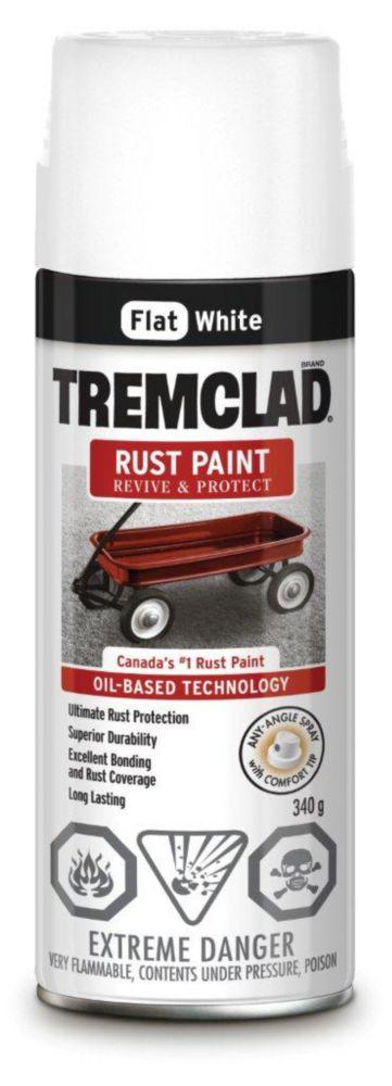 Rust Paint - Flat White (340g Aerosol)