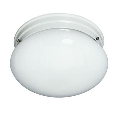 Ceiling Fixture With White Glass