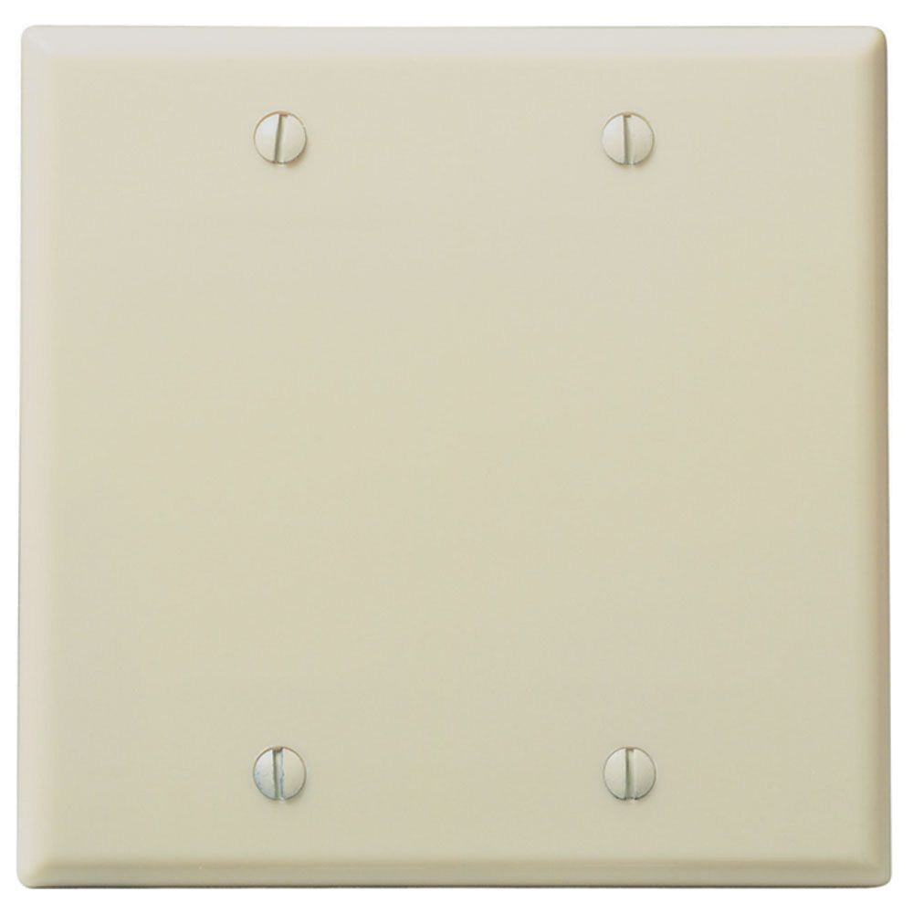 Dbl Blank Wall Plate - Ivory