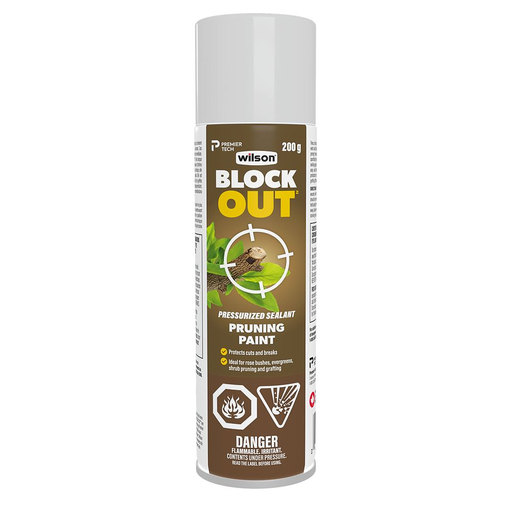 Pruning Paint
