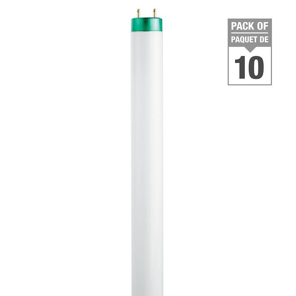 "Fluorescent 32W T8 48"" Daylight (6500k) - 10 Pack"