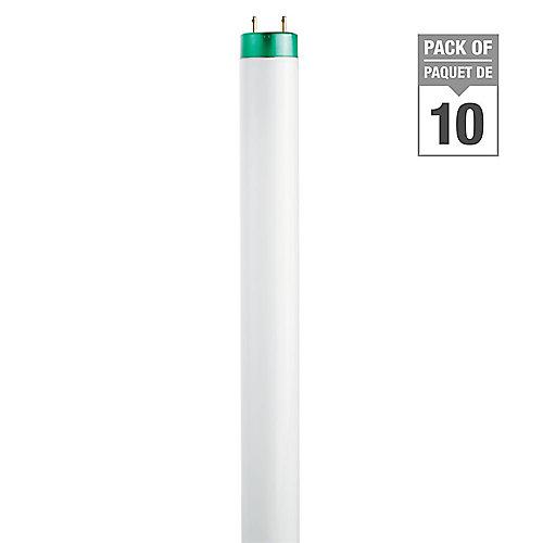 "Fluorescent 32W T8 48"""" Daylight (6500k) - (10-Pack)"