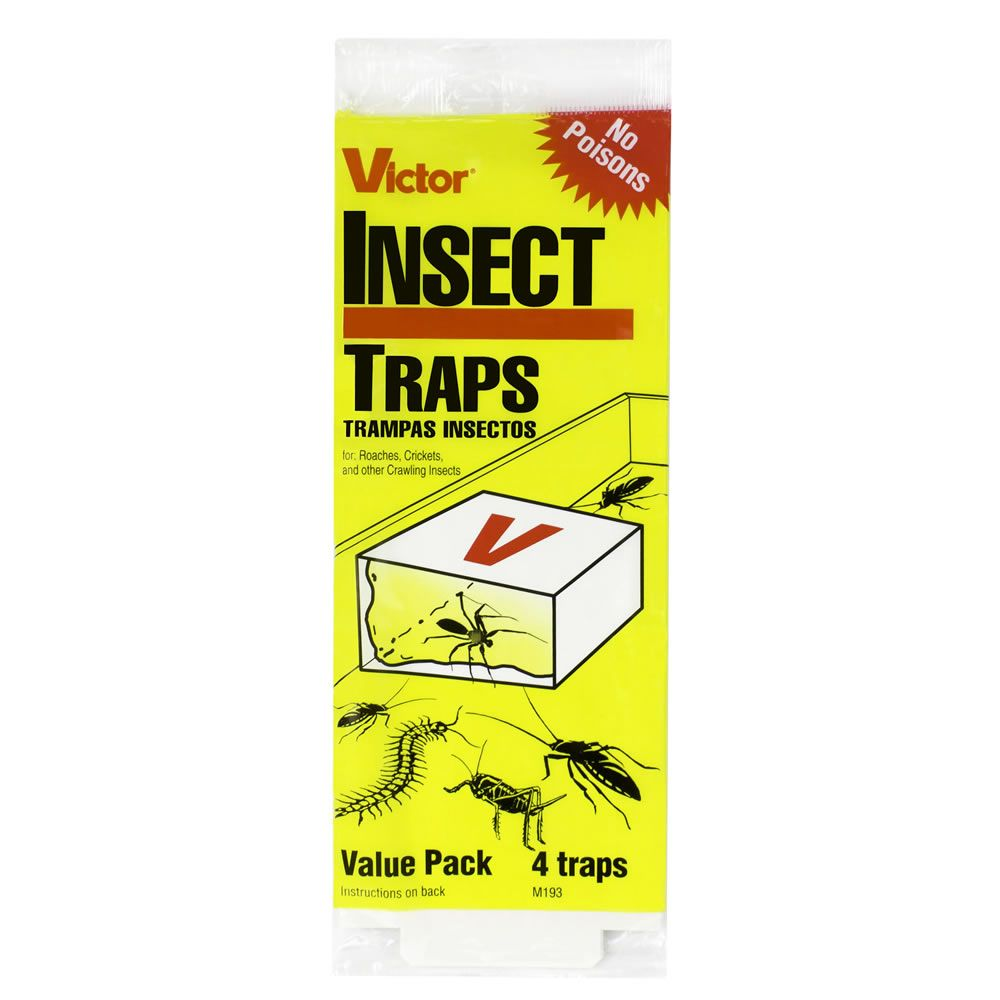 Poison-Free 4-Pack Insect Trap