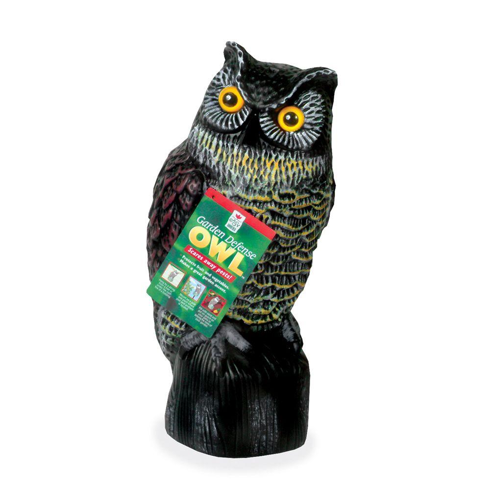 Easy Gardener Garden Defence Owl The Home Depot Canada