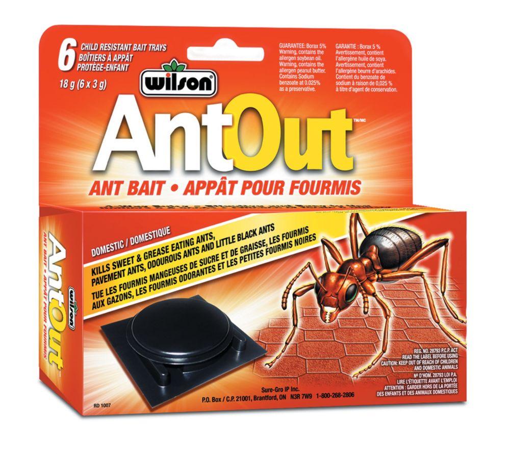 Wilson Antout Ant Traps Plastic - 6 Pack