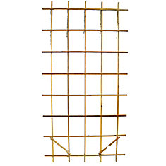 Premium Ladder 4 ft. x 8 ft. Trellis