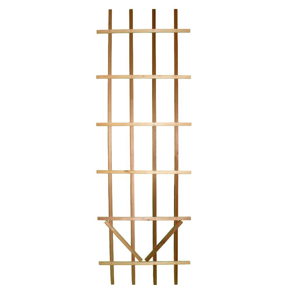 Premium Ladder - 2 x 6