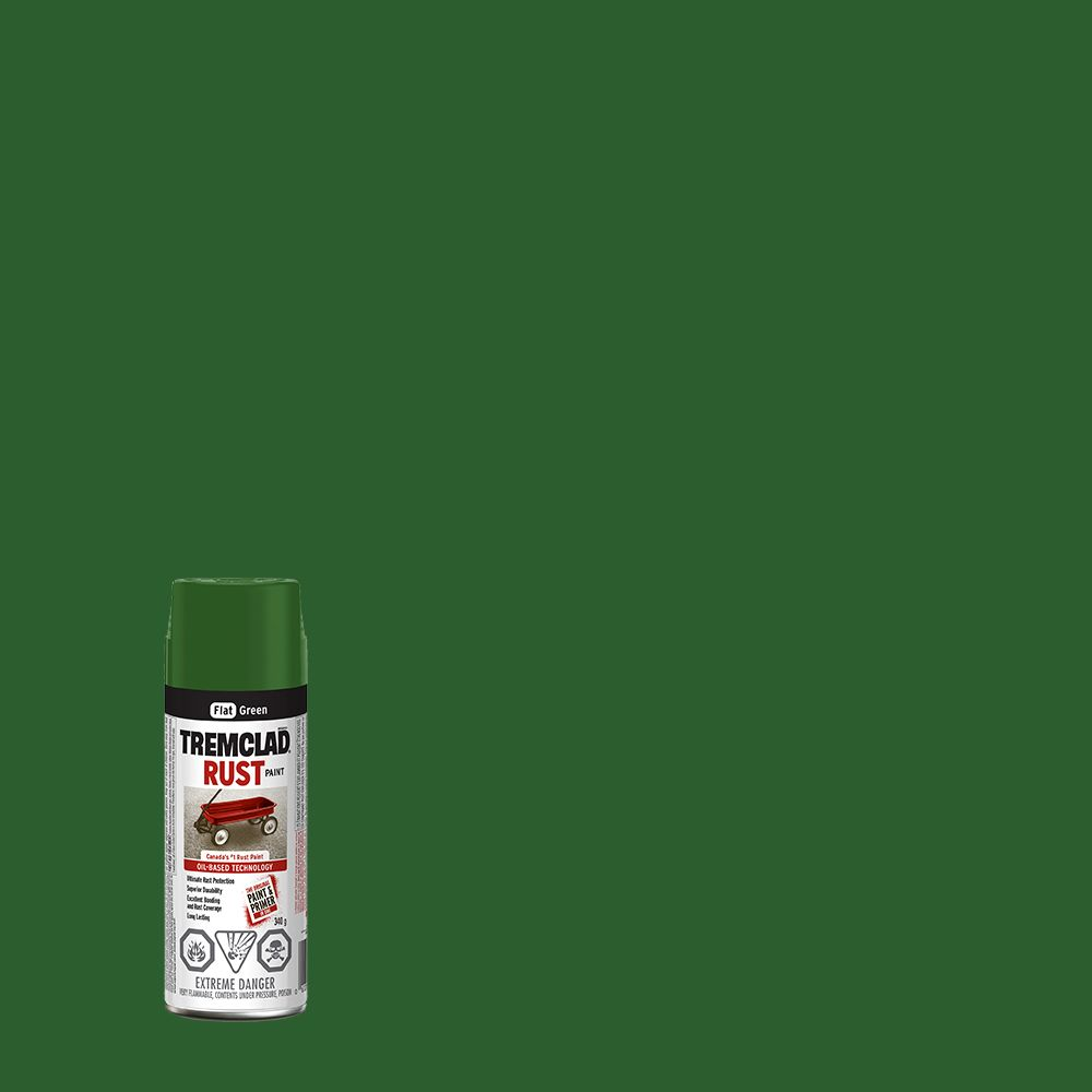 Peinture Antirouille - Vert Mat - 340g