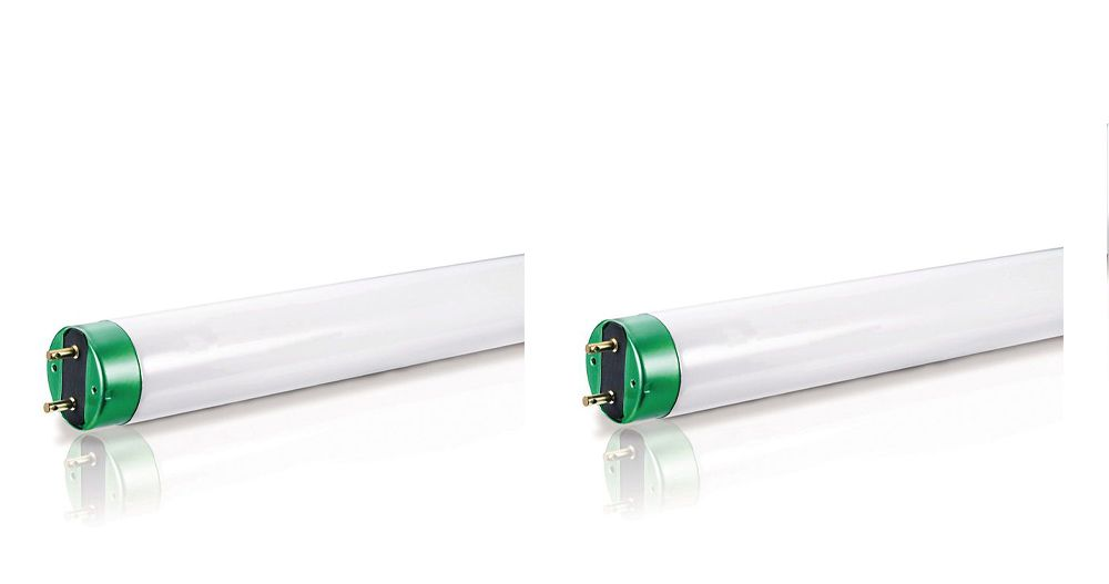 """Fluorescent 32W T8 48"""" Natural (5000K) - 2 Pack"""