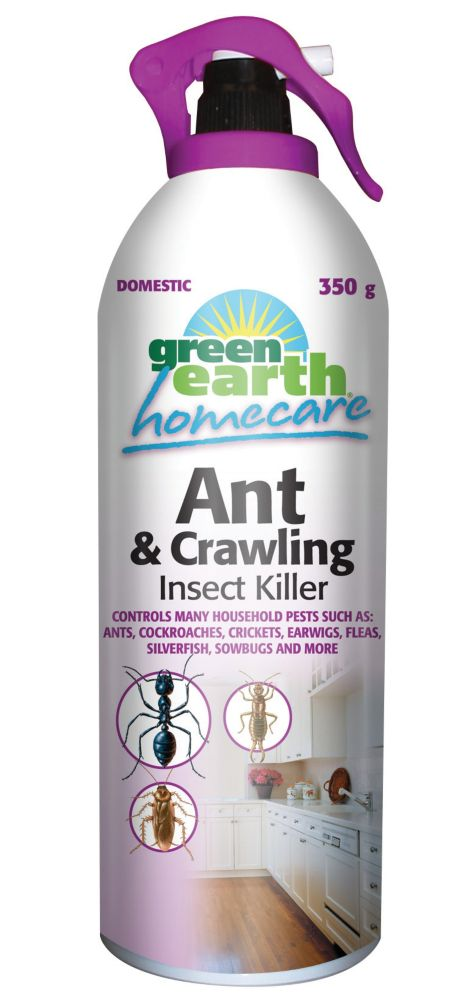 Green Earth Ant Crawling Insect Killer 350 G The Home Depot Canada
