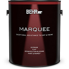 Exterior Flat Stain-Blocking Paint with Primer, 3.7L