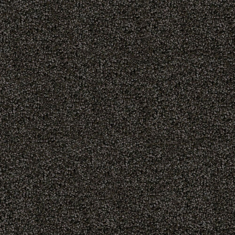 Chelwood - Chic Carpet - Per Sq. Feet