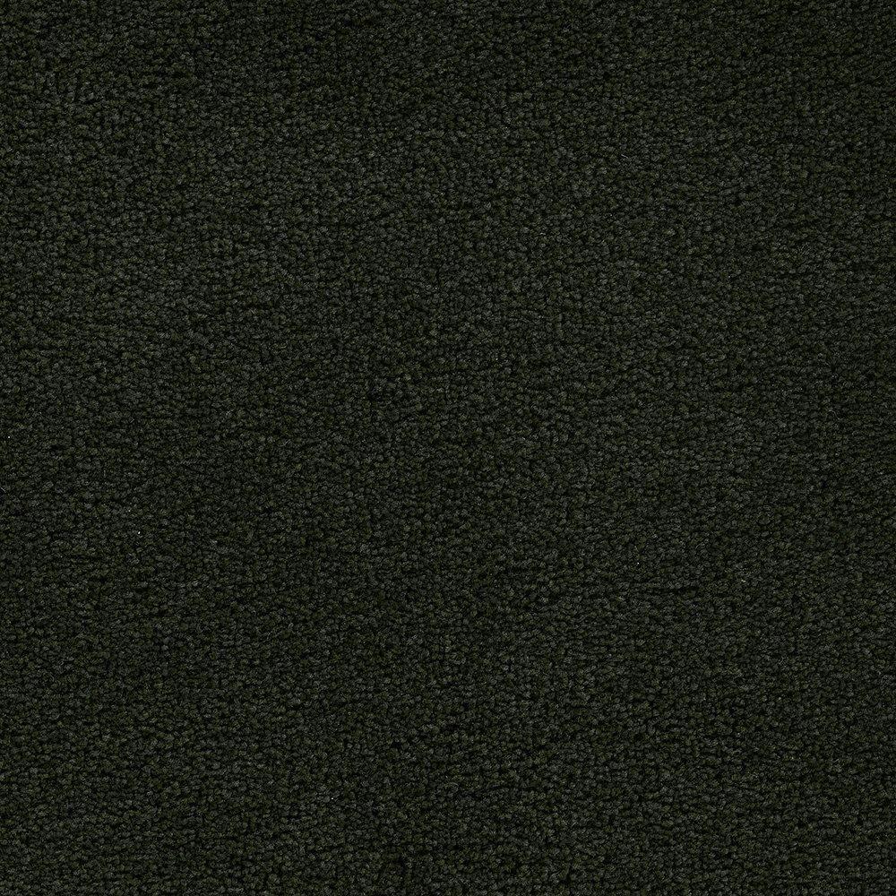 Sandhurt - Coccinelle tapis - Par pieds carrés