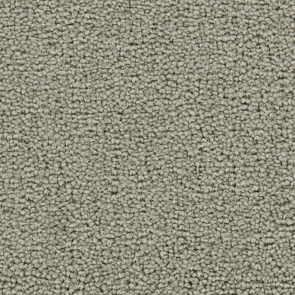 Sitting Pretty - Charmed Carpet - Per Sq. Feet