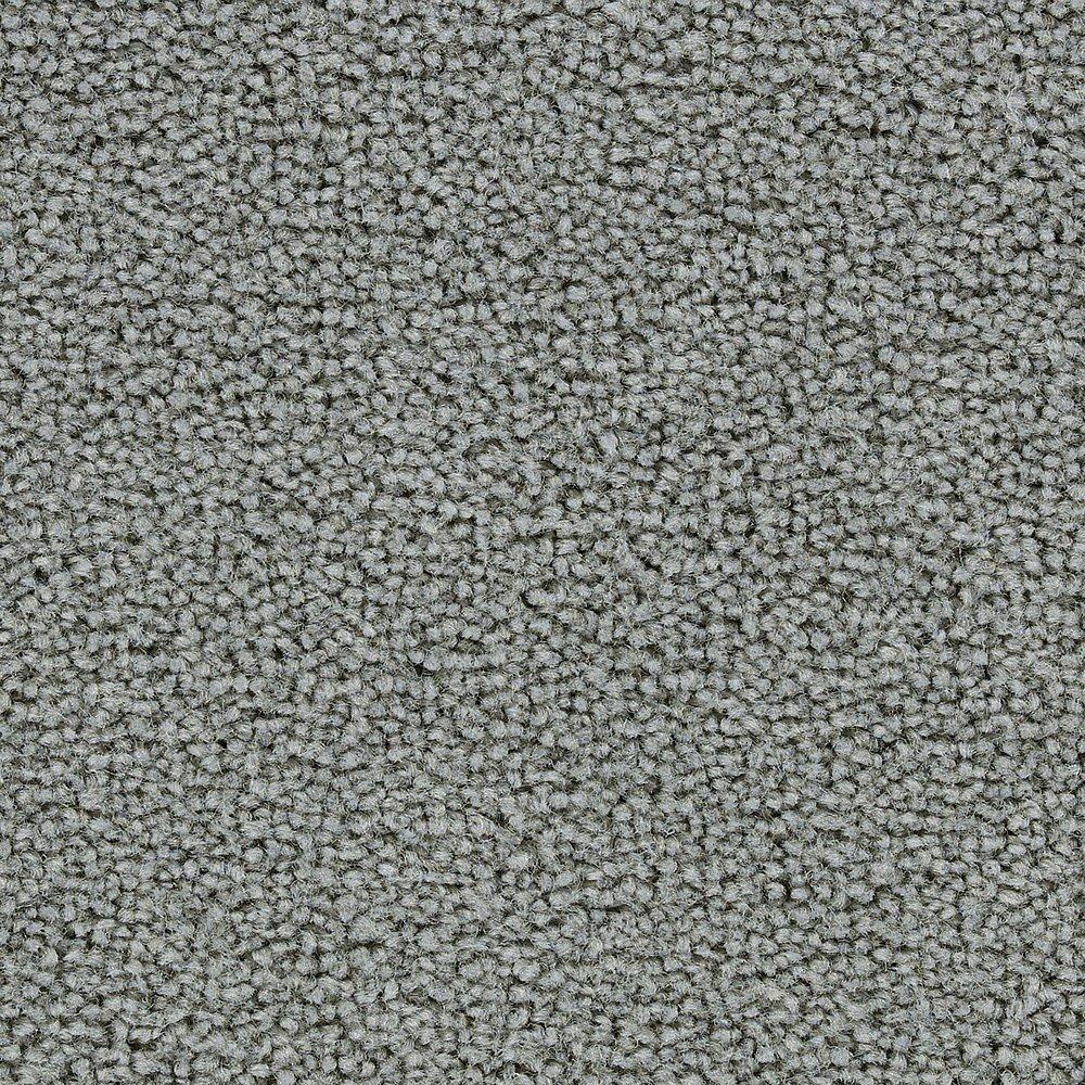 Sitting Pretty - Setee Carpet - Per Sq. Feet