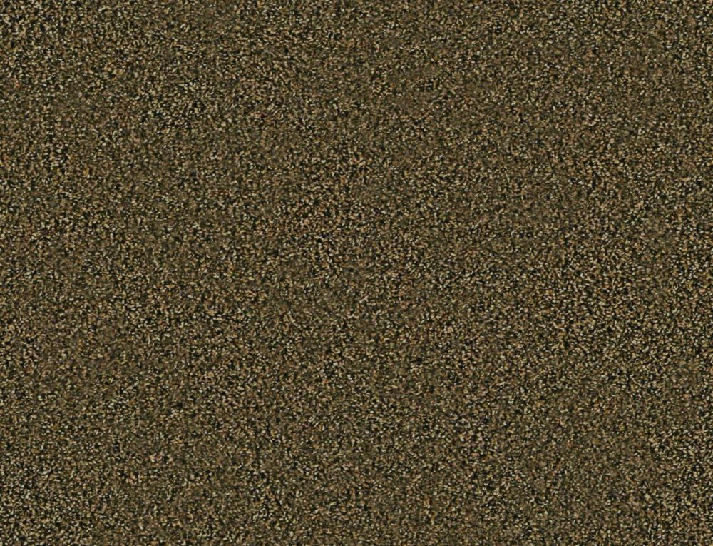 Abbeville I - Revealing Carpet - Per Sq. Feet