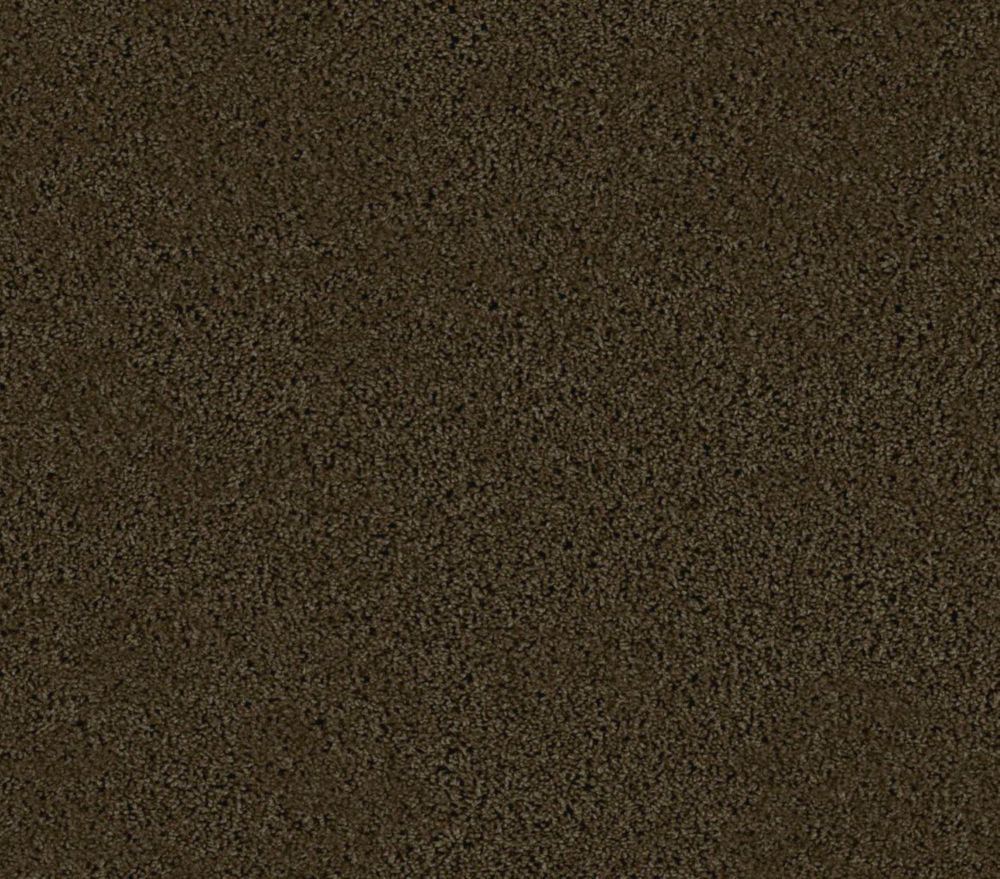 Abbeville I - Breed Carpet - Per Sq. Feet