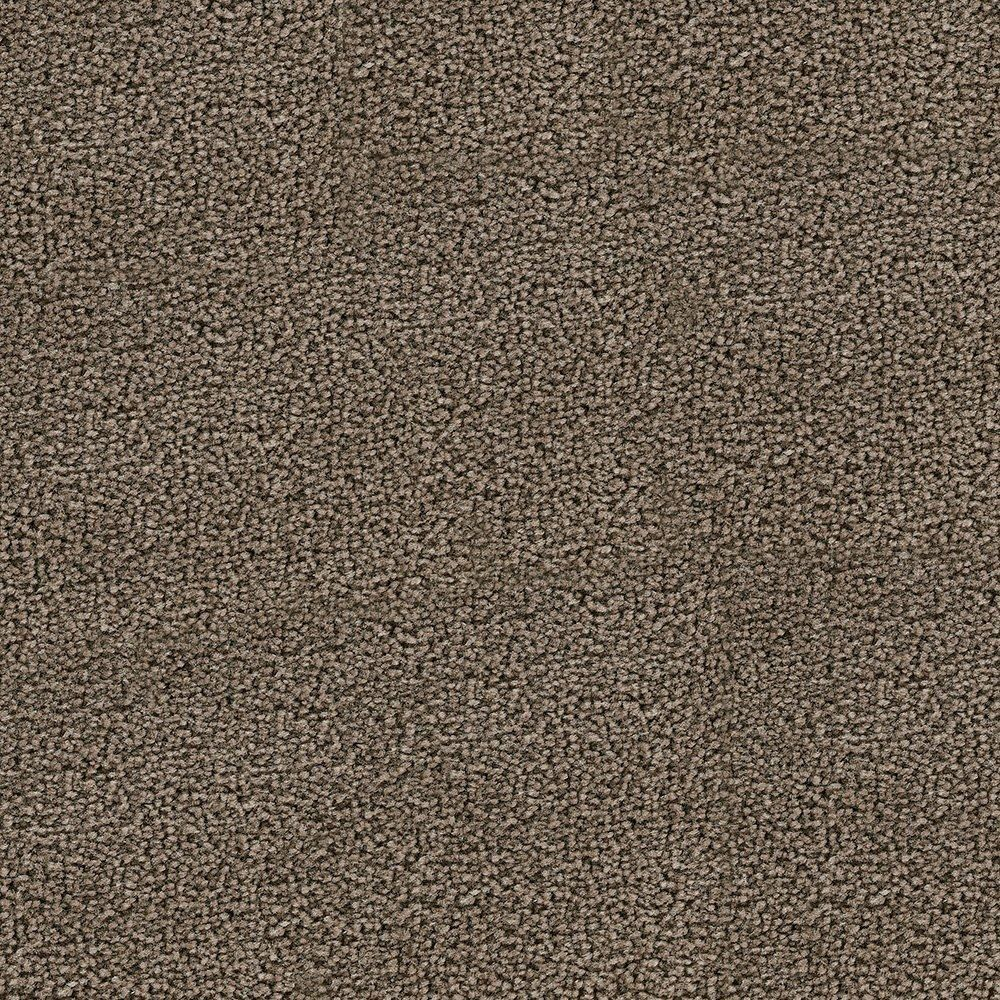 Sandhurt - Iced Tead Carpet - Per Sq. Feet
