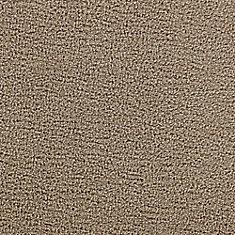 Beaulieu Canada Sandhurt Porch Carpet Per Sq Feet The Home
