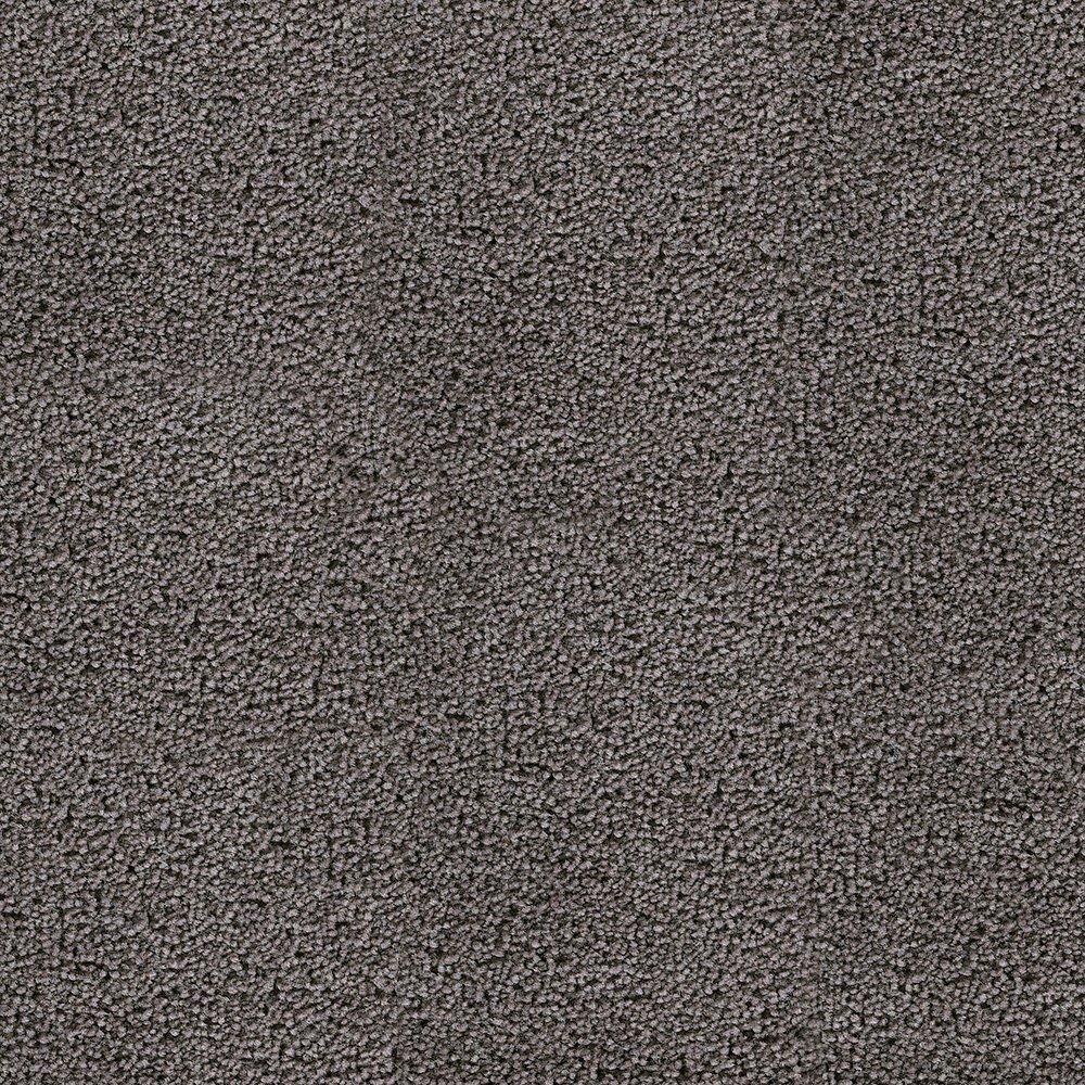 Sandhurt - Singing Birds Carpet - Per Sq. Feet