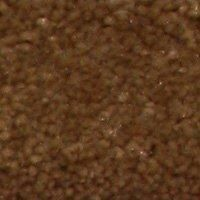 Aura - Caramel Carpet - Per Sq. Feet