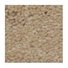 Aura - Poudre tapis - Par pieds carrés
