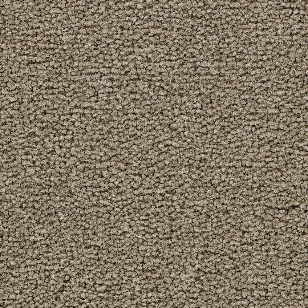 Sitting Pretty - Lush Carpet - Per Sq. Feet