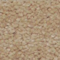Aura - Nude Carpet - Per Sq. Feet