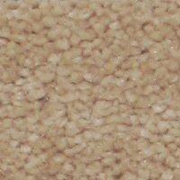 Aura - Nude Carpet - Per Sq. Feet