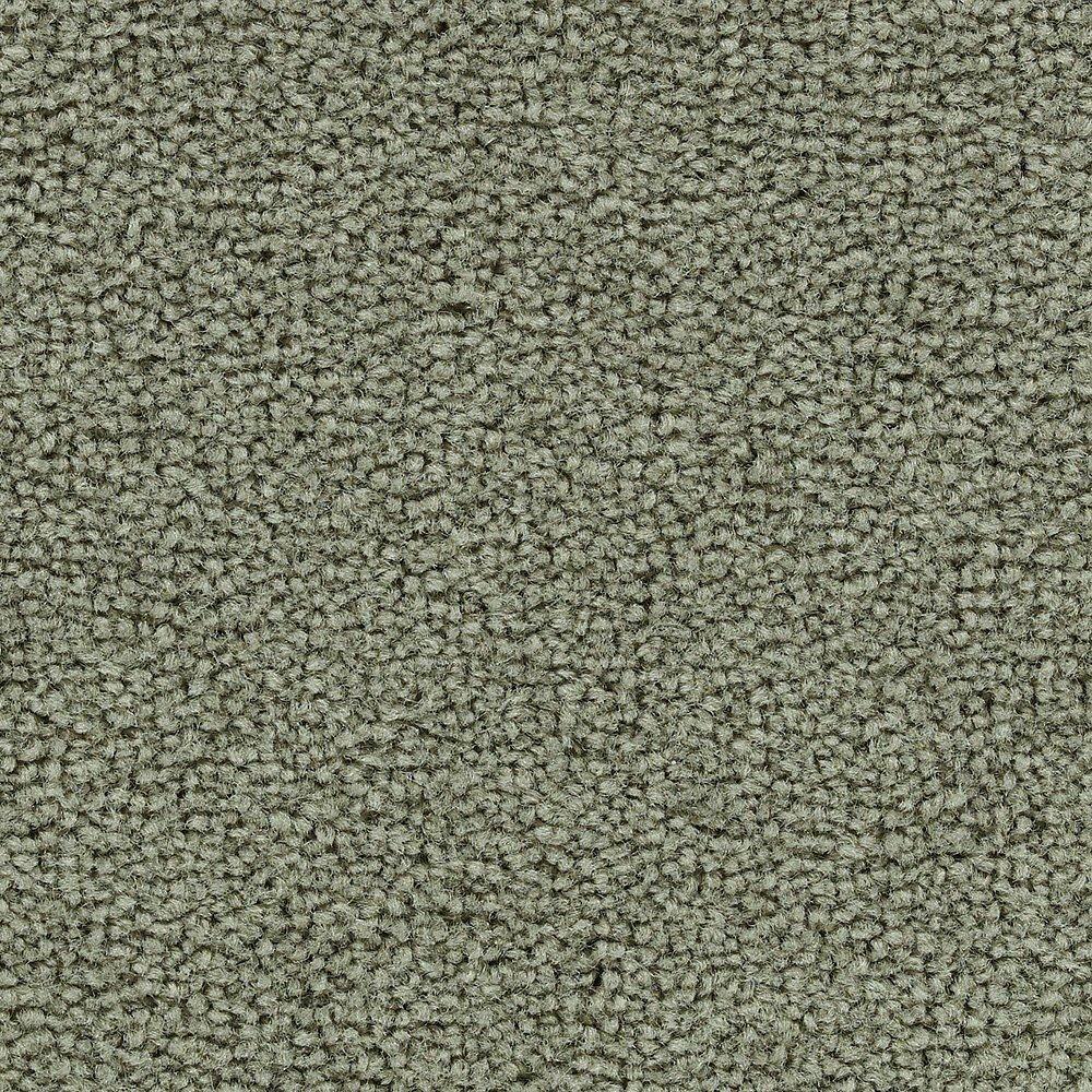Sitting Pretty - Jalousie tapis - Par pieds carrés