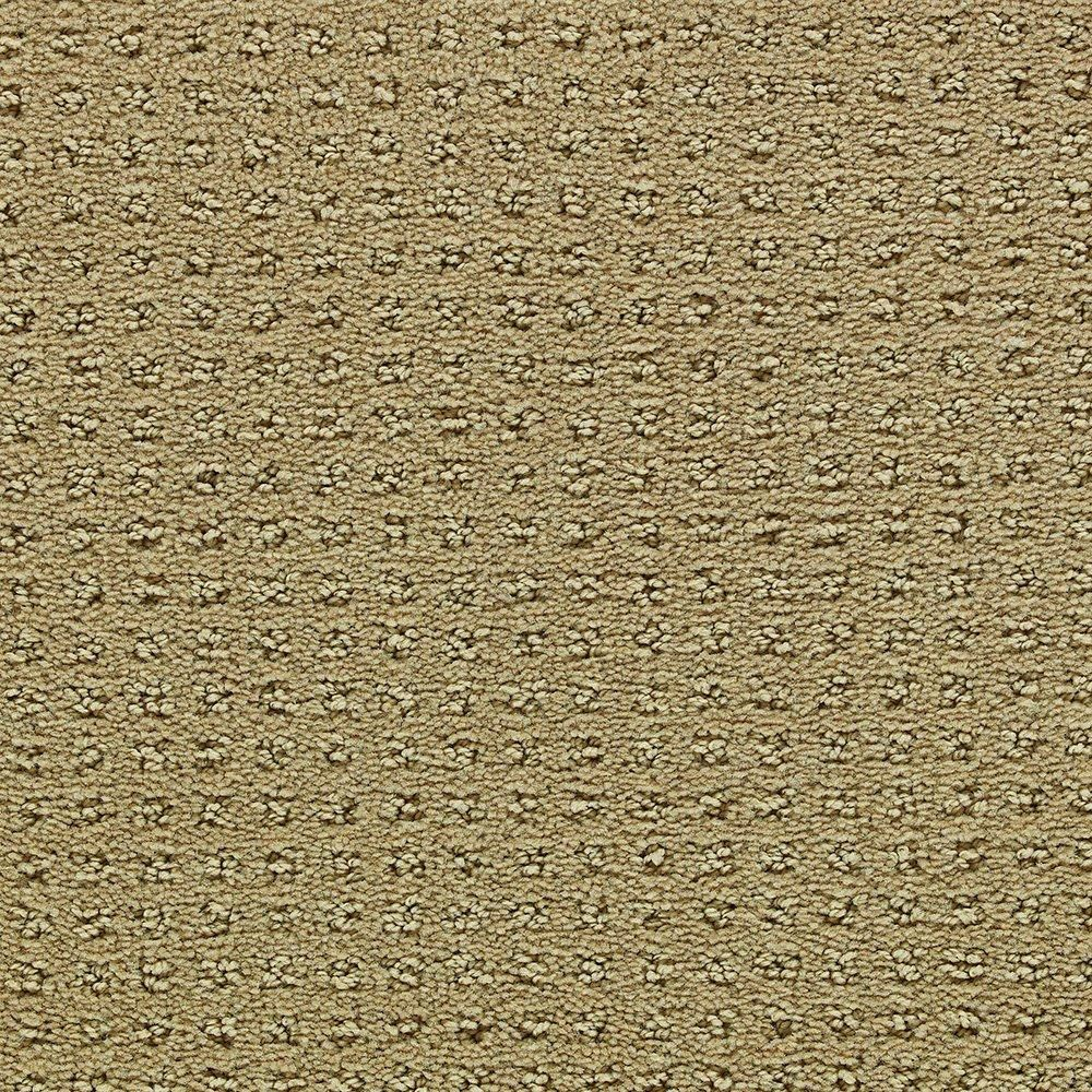 Primrose Valley - Sharp Carpet - Per Sq. Feet