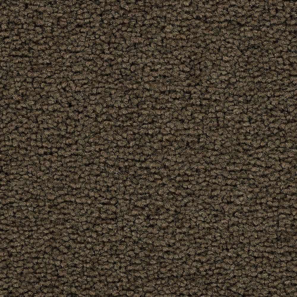 Sitting Pretty - Americano Carpet - Per Sq. Feet