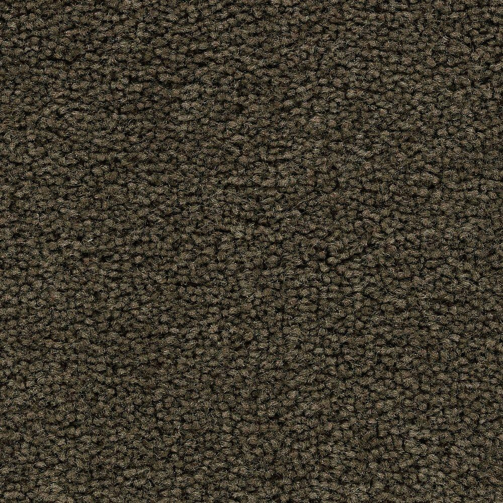 Sitting Pretty - Cigar Carpet - Per Sq. Feet