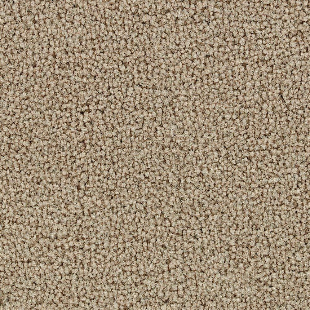 Sitting Pretty - Honey Carpet - Per Sq. Feet