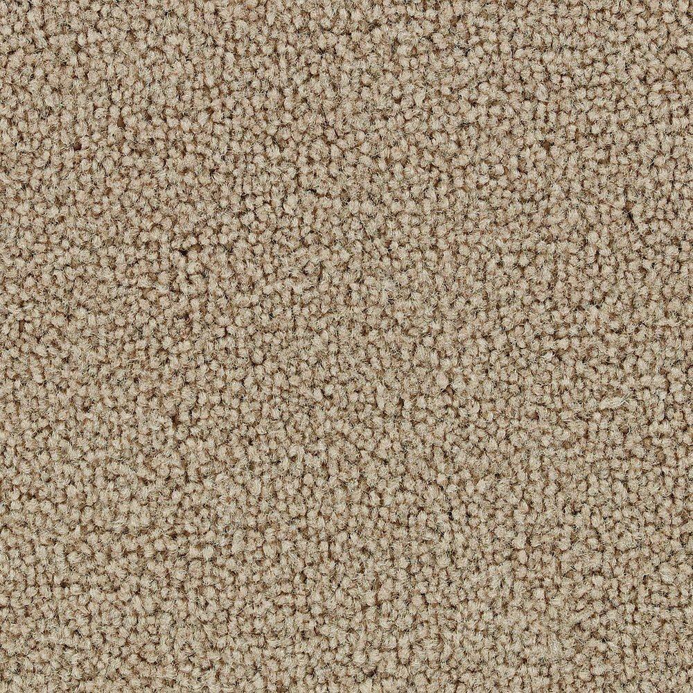 Sitting Pretty - Honey Carpet - Per Sq. Feet