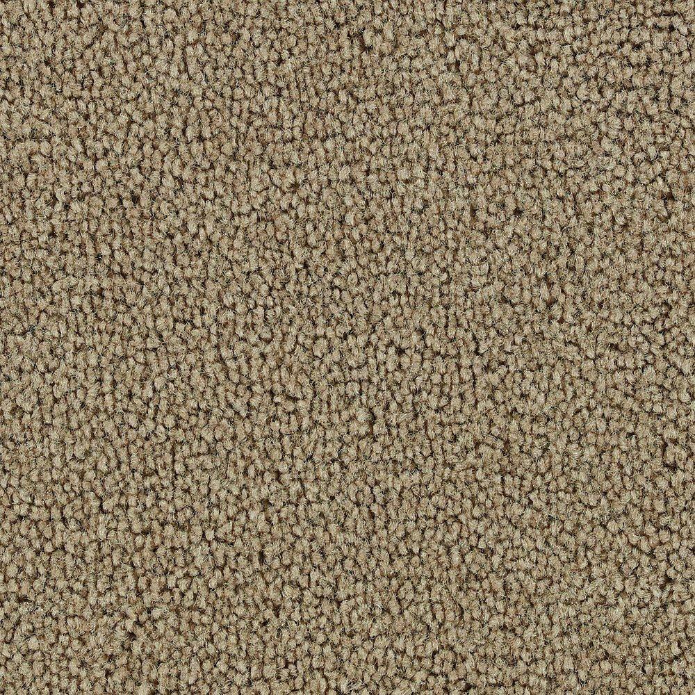 Sitting Pretty - Brazen Carpet - Per Sq. Feet