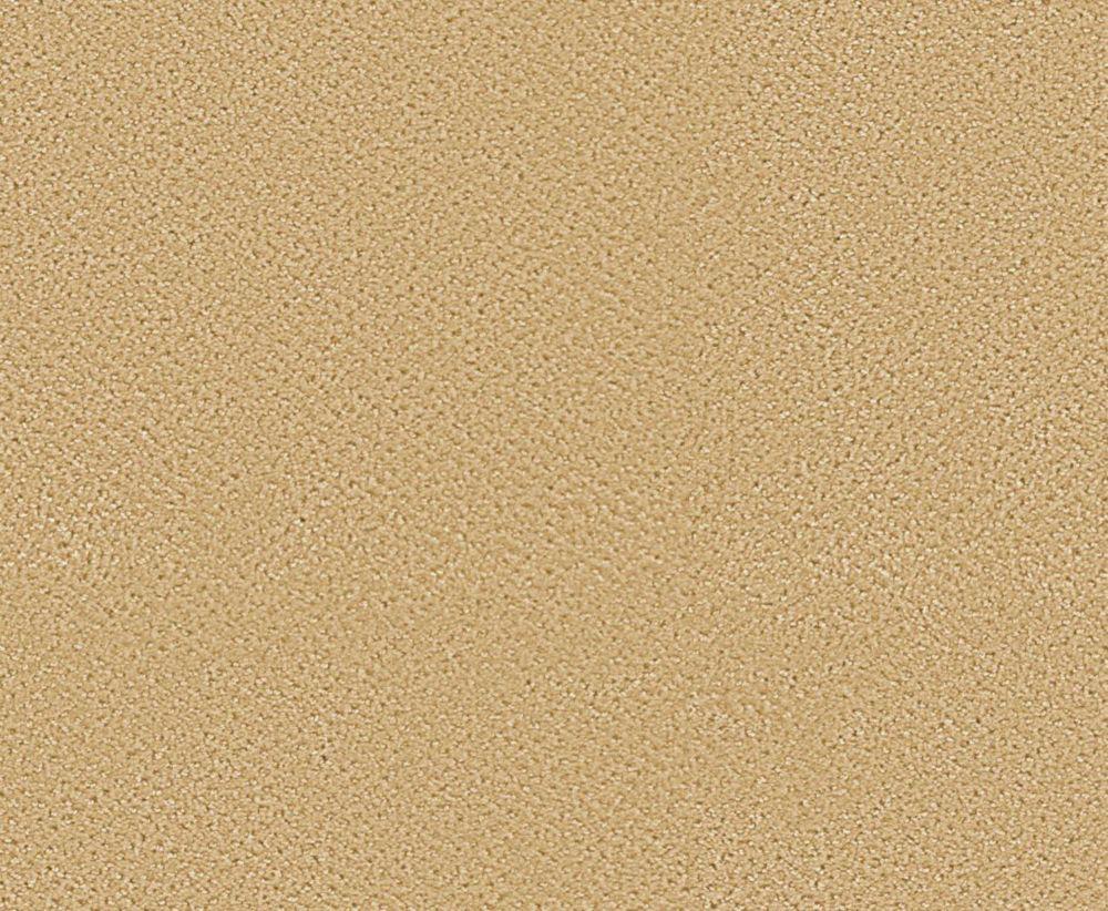 Bayhem - Practical Beige Carpet - Per Sq. Feet