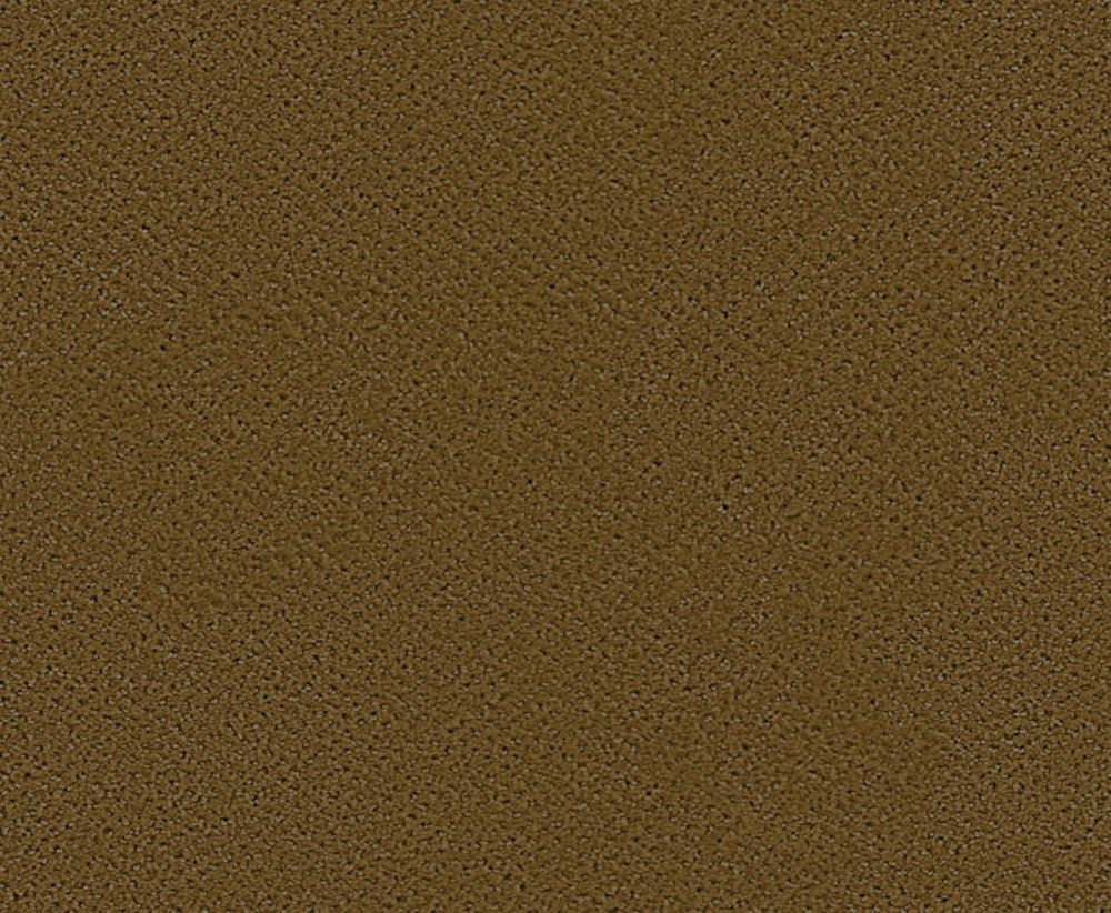 Bayhem - Olive Branch Carpet - Per Sq. Feet