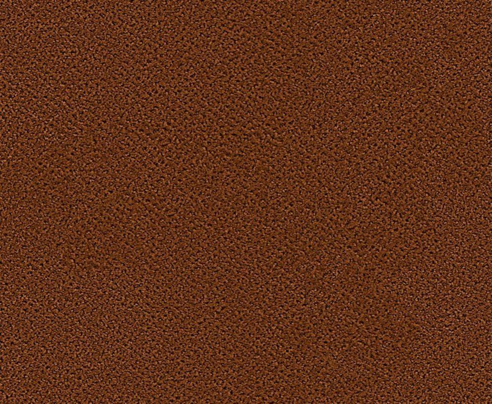 Bayhem - Biscuit au gingembre tapis - Par pieds carrés