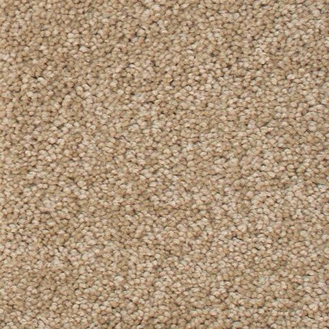 Fleetwood - Velvety Sand Carpet - Per Sq. Feet