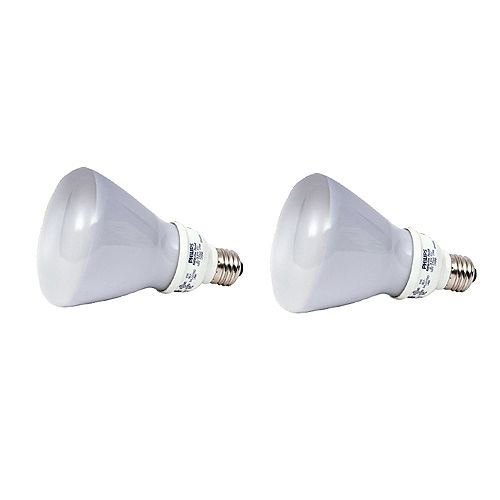 Philips 16W R30 Reflector Bright White (2-Pack)