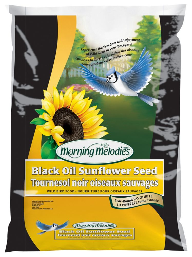 Morning Melodies MORNING MELODIES BLACK OIL SUNFLOWER SEED 3.6KG