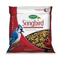 Scotts pour Oiseaux chanteurs