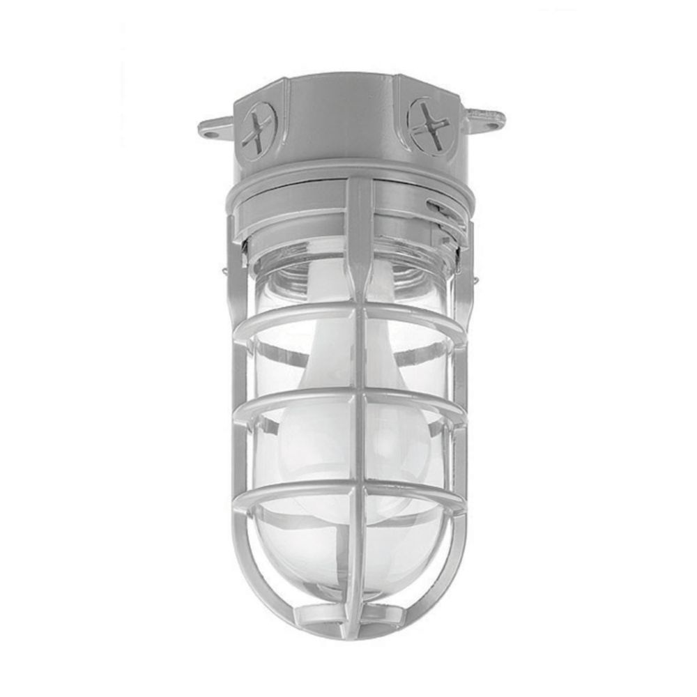Carlon Metal Cage Light Ceiling Mount