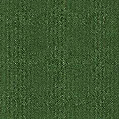 Green Comet 12 ft x Custom Length Carpet
