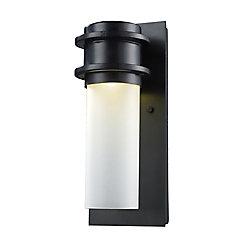Titan Lighting Applique murale extérieure à 1 ampoule DEL au fini noir mat