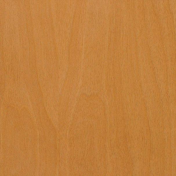 Sample Chip-Ins Birch Sugar
