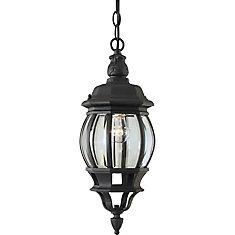 Burton 1-Light Black Outdoor Ceiling-Light