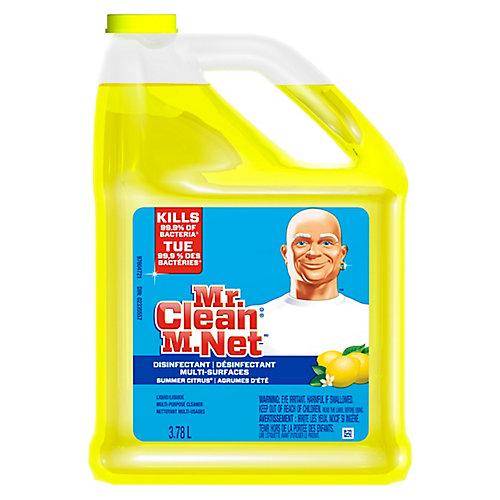 Solution de nettoyage désinfectante pour surfaces multiples, 3,78L, agrumes d'été