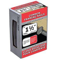 Paulin 1 1/2 po (4d) Clou d'ossature commun galvanisé à chaud - 420 g (environ 240 pièces par paquet)